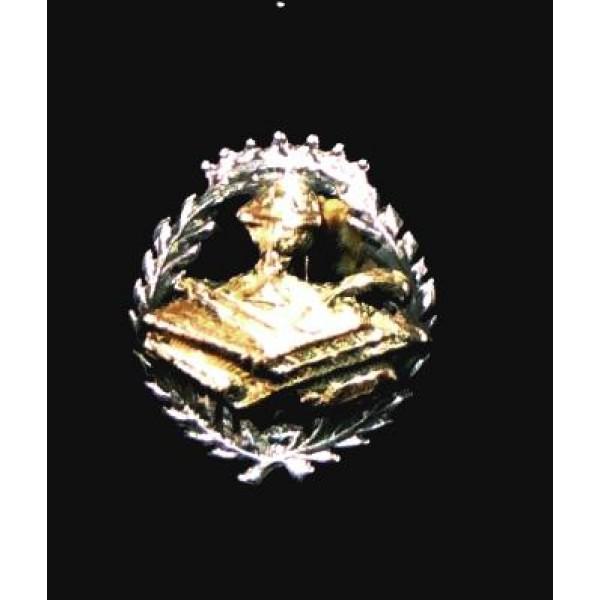 Insignia plata y oro Magisterio